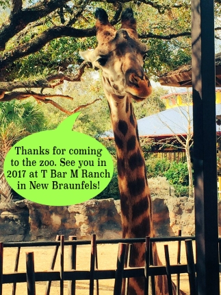 giraffe-see-you-2017